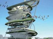 Urban Aviary, volière gratte-ciel York
