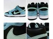 "Nike Dunk ""Sea Crystal"""