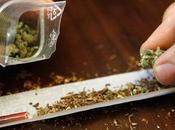 engagement François Hollande a-t-il fumé cannabis