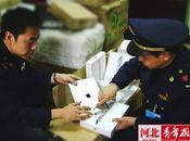 Ipad déclaré illégal Chine
