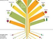 perte notre biodiversité alimentaire...