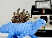 Dino'Plant, petits vases forme dinosaures