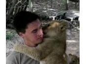 lionceaux sautent dessus pour câlins