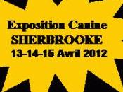 Exposition canine Club Canin l'Estrie avril 2012 Centre Foire Sherbrooke