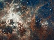 paysages variés nébuleuse Tarentule photographiés Hubble