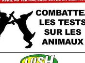 Lush repart campagne, chacun sienne…(Episode