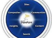 Entreprise collaborative, Pourquoi avec SharePoint