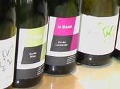 """REVEVIN 2012 vins l'appellation Savennières Roche Moines"""" (fin)"""