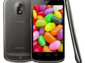 Galaxy Nexus Mise jour cours vers Jelly Bean