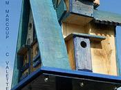 Maisons bleu-nichoir Betheny