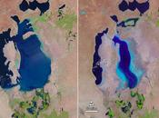 Google Earth fête Landsat