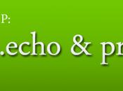 echo print