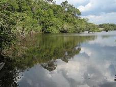Cuyabeno, exemple pour l'avenir l'Amazonie