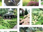 Résolution sérénité cultiver jardin