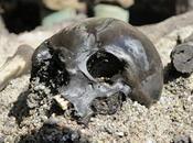 Danemark: sait plus l'armée sacrifiée retrouvée dans tourbière...