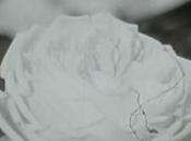 Création fleurs tissus 1969