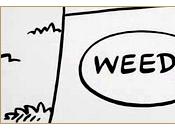 Weeds Series Finale]