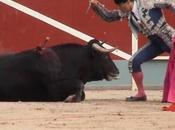 Exprimez-vous contre corrida
