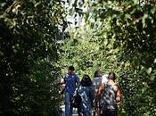 York Highline