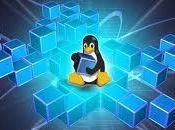 Revolution Linux