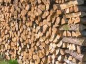 bois, moyen plus economique pour chauffer