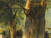 Fontainebleau Hommage forêt, nature dans tous états