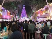 décembre 2012, Udonthani, illumination sapin Noël
