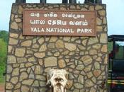 parc national Yala star Lanka