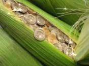Faire face défis environnementaux biocarburants sont-ils hors tout soupçon