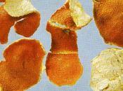 peau mandarine séchée dans pharmacopée chinoise