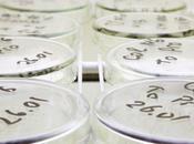 traitements plus ciblés grâce génétique
