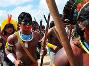 Brésil tribu amazonienne menace déclarer guerre gouvernement