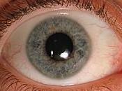symptômes connaître impérativement d'urgences ophtalmologiques