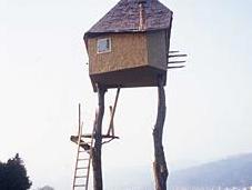 Terunobu Fujimori, l'architecte poétique bucolique