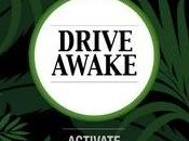 application pour prévenir l'endormissement volant