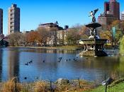 Voyage Pour trip New-York