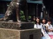 Film hatchi chien akita japon avec Richard Gere