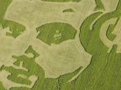 sons créateurs formes géométrique crop circles
