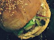 Thermomix pains hamburger