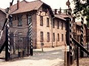 C'était donc Auschwitz… 1988
