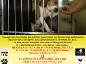Téléthon reconnait officiellement financer l'expérimentation animale
