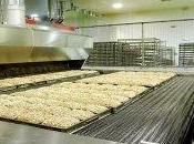 première boulangerie industrielle Algérie opérationnelle février prochain