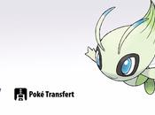 Celebi offert pour toute souscription Banque Pokémon