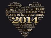 Bonne heureuse année 2014