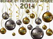 Bonjour vous,Bien l'Année 2014 soit déjà amorcée, j...