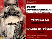 Exposition Février 2014 Montpellier