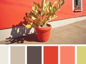 toi, c'est quoi meilleure palette couleurs