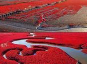 photos superbes Chine