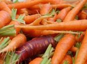 L'histoire carotte voulait être orange