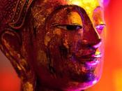 Sous regard Bouddha…